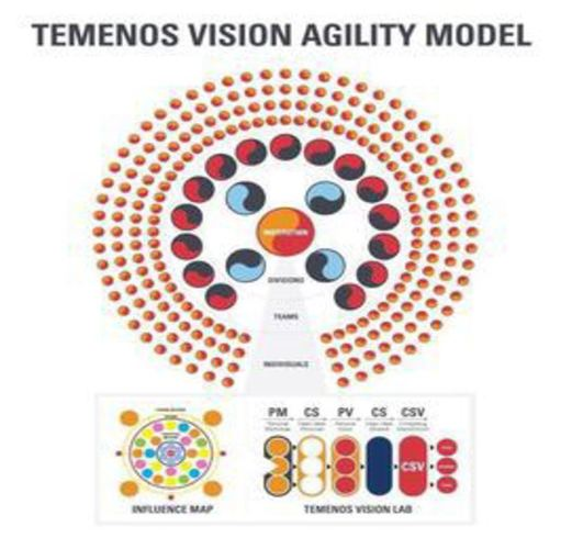 Temenos Vision Agility Model