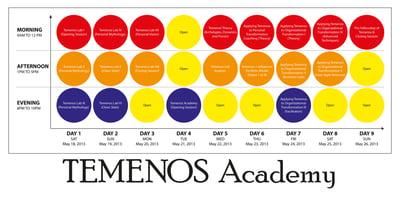 Announcing the Temenos Academy