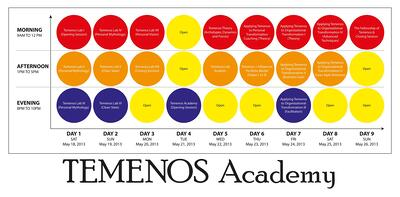 Announcing the Temenos Academy