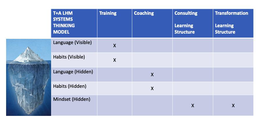 LHM Language Habits Mindset Systems Thinking Model-1
