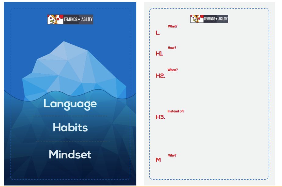 Language Habits and Mindset Approach