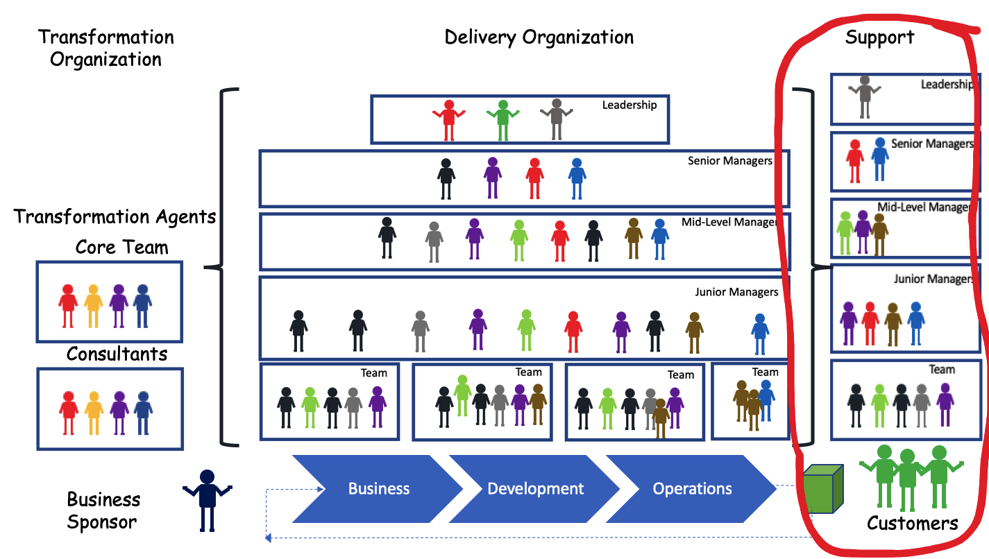 Support Organization in Transformation-1