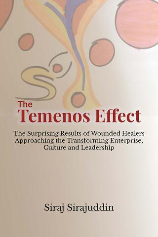 The Temenos Effect: The Surprising Results of Wounded Healers Approaching the Transforming Enterprise, Culture and Leadership
