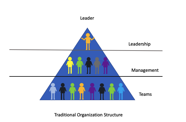 Traditional Organization Structure and Leadership